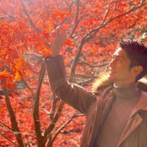 どんだけ紅葉が好きなんだ・・・